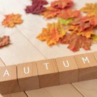 秋のトレンドカラーでおしゃれを楽しみましょう!